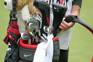 Največji zaslužkarji na PGA turneji